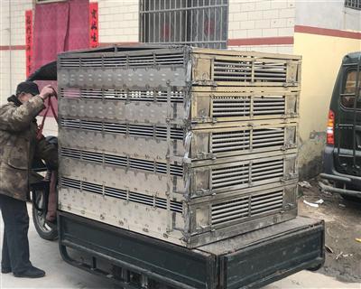 安徽金寨二次定制鸽笼