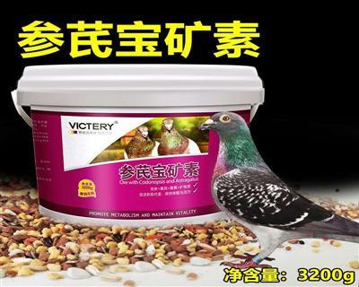 参芪宝矿素:党参+黄芪+蛋黄+矿物质