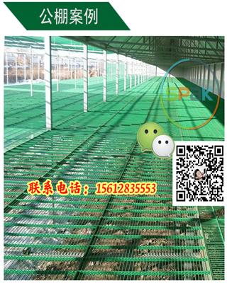 塑料表皮钢格地网鸽笼专用