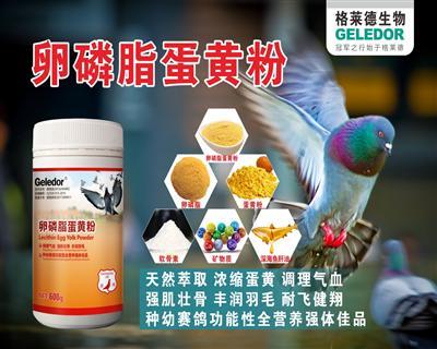 卵磷脂蛋黄粉