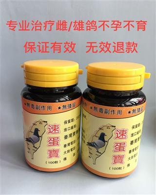 专业治疗雌/雄鸽不孕不育症 台湾速蛋宝-雌雄通用!
