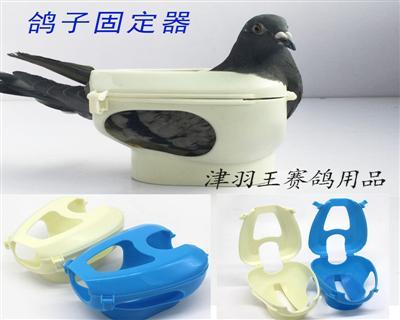津羽王信鸽固定器(束鸽器)