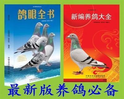 鸽眼全书 /新编养鸽大全 /一本包邮