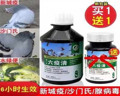 (包邮)豪翔鸽药【六疫清】赛鸽药品新城疫沙门氏水绿便鸽子药