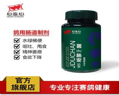 心连心菌毒肠安 胶囊治疗肠道拉稀水便绿便