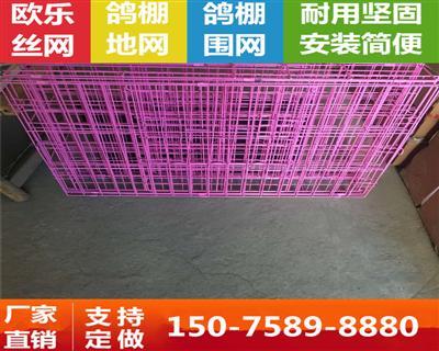 喷塑鸽笼 拍卖笼 隔离笼 展示笼 配对笼 观察笼 铁丝笼