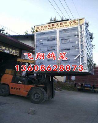 河北渤海新区信鸽协会定制不锈钢放飞笼