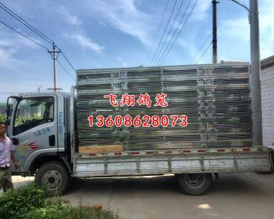 沈阳市铁西区宏翔俱乐部定制欧式4000羽定制不锈钢放飞笼