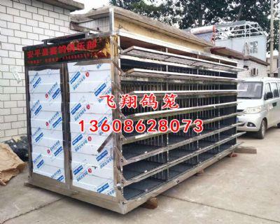 安平县赛鸽俱乐部定制不锈钢放飞笼/不锈钢
