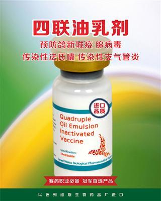 四联注射进口疫苗