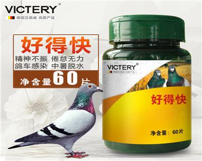 汉诺威鸽药【好得快】控制病毒病、混合感染 60片/瓶