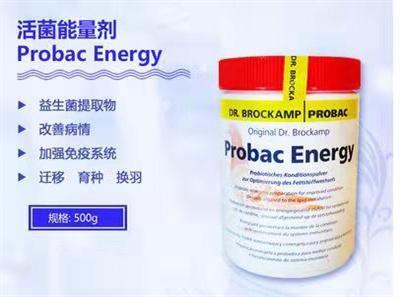 坎普活菌能量 Probac energy