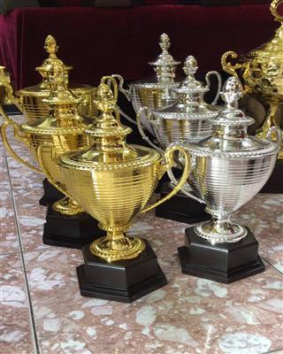 AQ豪华型超大全金属奖杯
