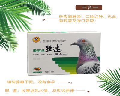 爱丽丝鸽药鸽子药赛鸽信鸽三合一50克粉剂呼吸道肠道和毛滴虫