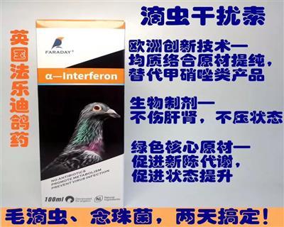 法乐迪鸽药英国进口滴虫干扰素毛滴虫念珠菌治疗预防清理