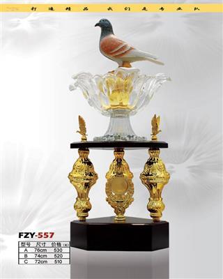 FZY-1109