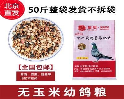 美顿宝战鸽无玉米鸽粮50斤鸟食