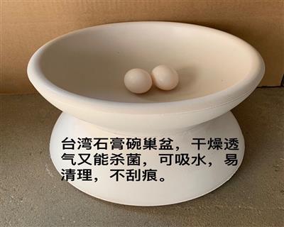 台湾石膏巢盆 鸽子碗窝 种鸽繁