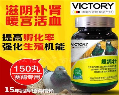 汉诺威鸽药雌鸽壮种鸽配对增卵治疗不孕不产蛋软壳沙皮蛋鸽子药