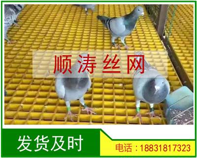 鸽舍养殖格栅地网