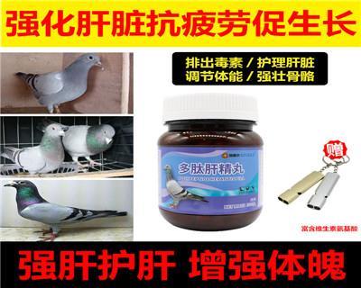 鸽赛尔多肽肝精丸赛鸽用品种幼信鸽调理营养保健品鸽子药大全包邮