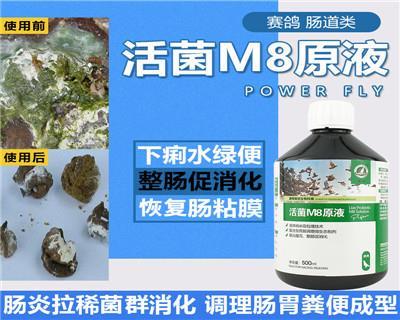 豪翔鸽药【活菌M8原液】肠炎腹泻整肠促消化500ml/瓶