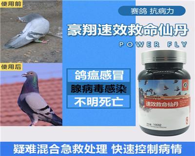 豪翔鸽药【速效救命仙丹】控制病毒,不明症