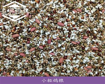 40斤小粒鸽粮顶级精品营养饲料