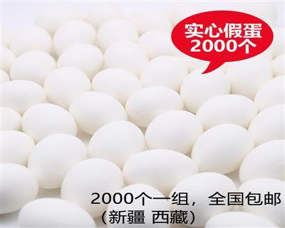 鸽具信鸽用品实心塑料鸽子蛋2000个一组批发