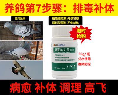鸽赛尔7号肝精电解质二合一排毒