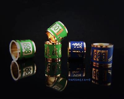 铜胎珐琅彩极品镀金环(私人订制)
