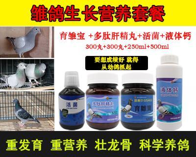 鸽赛尔鸽药幼鸽生长营养系列套装组合