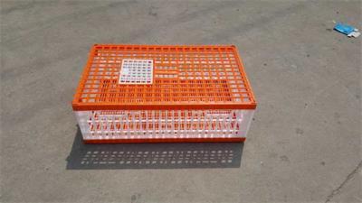 手提塑料运输笼