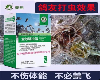 新款 全效驱虫清 一次用药驱除常见体内、外寄生虫