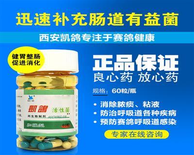 【凯鸽活性菌】60粒鸽药健胃整肠/效果好/促进消化吸收正品