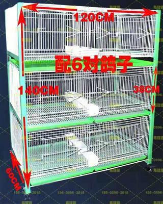 种鸽配对笼繁殖笼 三层六对