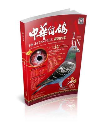 中华信鸽-第1期