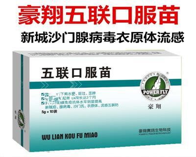 五联口服苗豪翔鸽药下面病毒下痢水便、呕吐、歪脖、流感 五联防新城疫、腺病毒、沙门氏、衣原体、流感