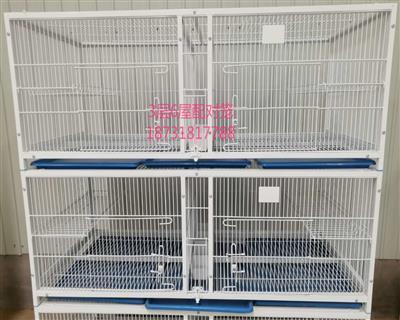 宽敞的信鸽配对笼