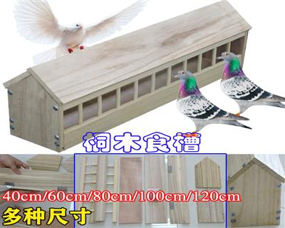 鸽子用品用具鸽子食槽实木食槽