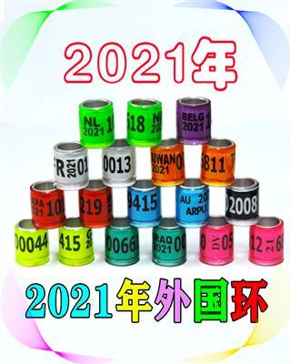 2021年外国环信鸽足环/种鸽环鸽具用品