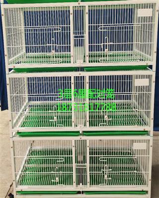 信鸽观察笼配对笼优惠