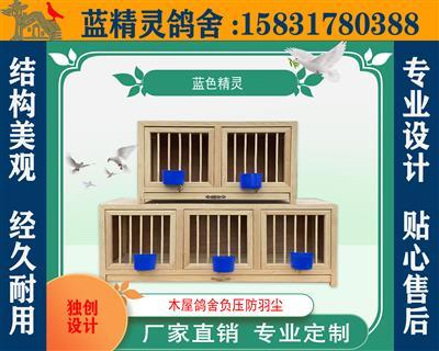 巢箱---赛鸽调理箱
