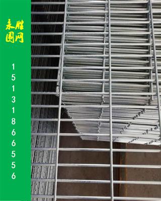 鸽棚常用围网防麻雀黄鼠狼