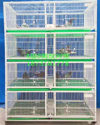 信鸽配对笼观察笼