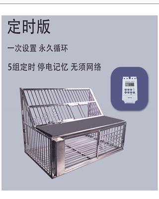 津羽王鸽具 不锈钢自动跳笼50-120cm 定时版