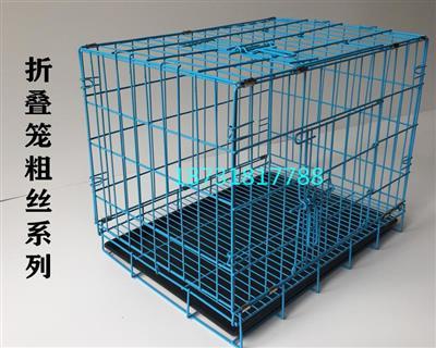 粗丝信鸽展示笼、折叠笼