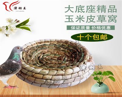 津羽王精品鸽子草窝玉米皮油草窝塑料可换心草窝巢盆棕垫