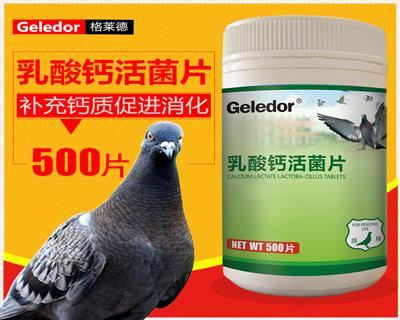 格莱德鸽药【乳酸钙活菌片】提高免疫嗉囊炎