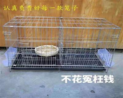 赛鸽孵化繁殖笼 信鸽观察笼